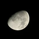 Dark Side of the Third Quarter Moon by Navigator