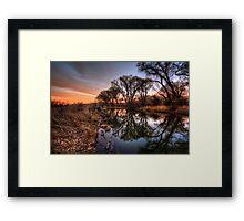Narcissistic Trees Framed Print