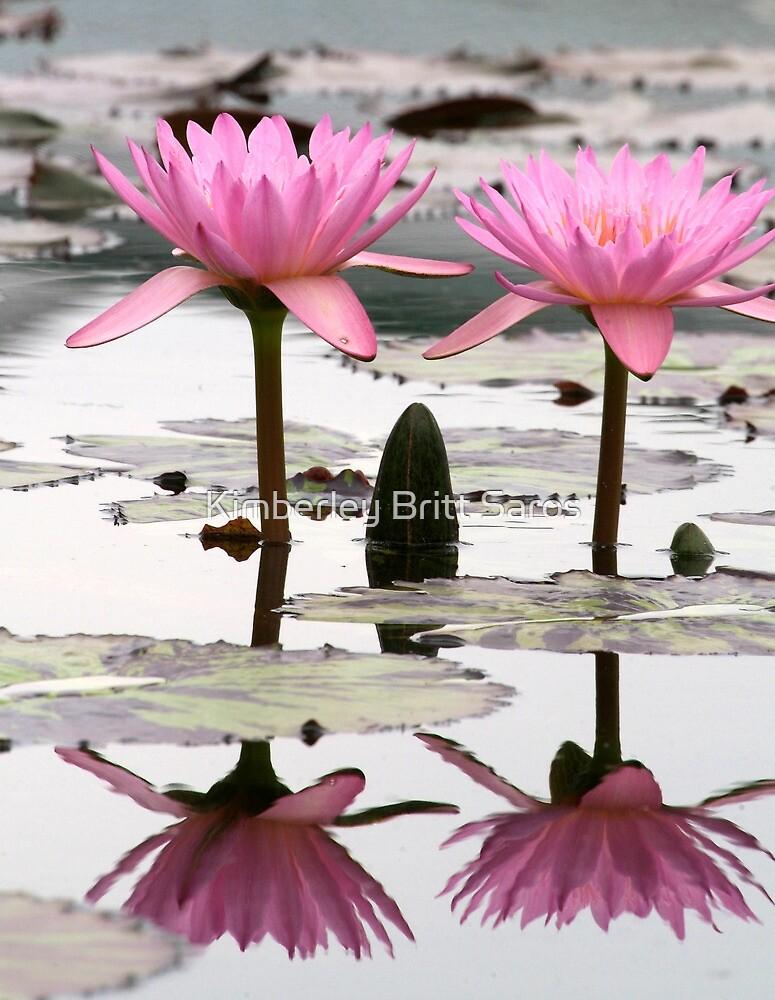 Twin Lilies by KBritt