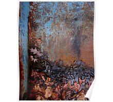 Natural Process, Vivid Decay - Chelmsford MA Poster