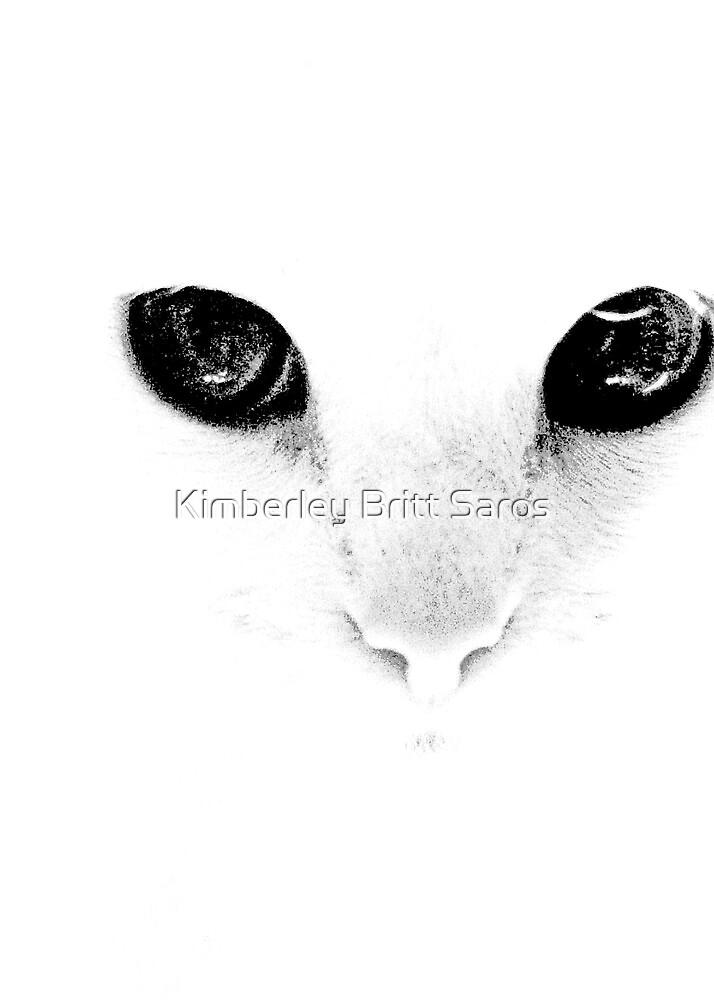 Misty by KBritt