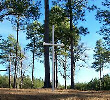 A Rural Roadside Cross in Georgia by Deborah Lazarus