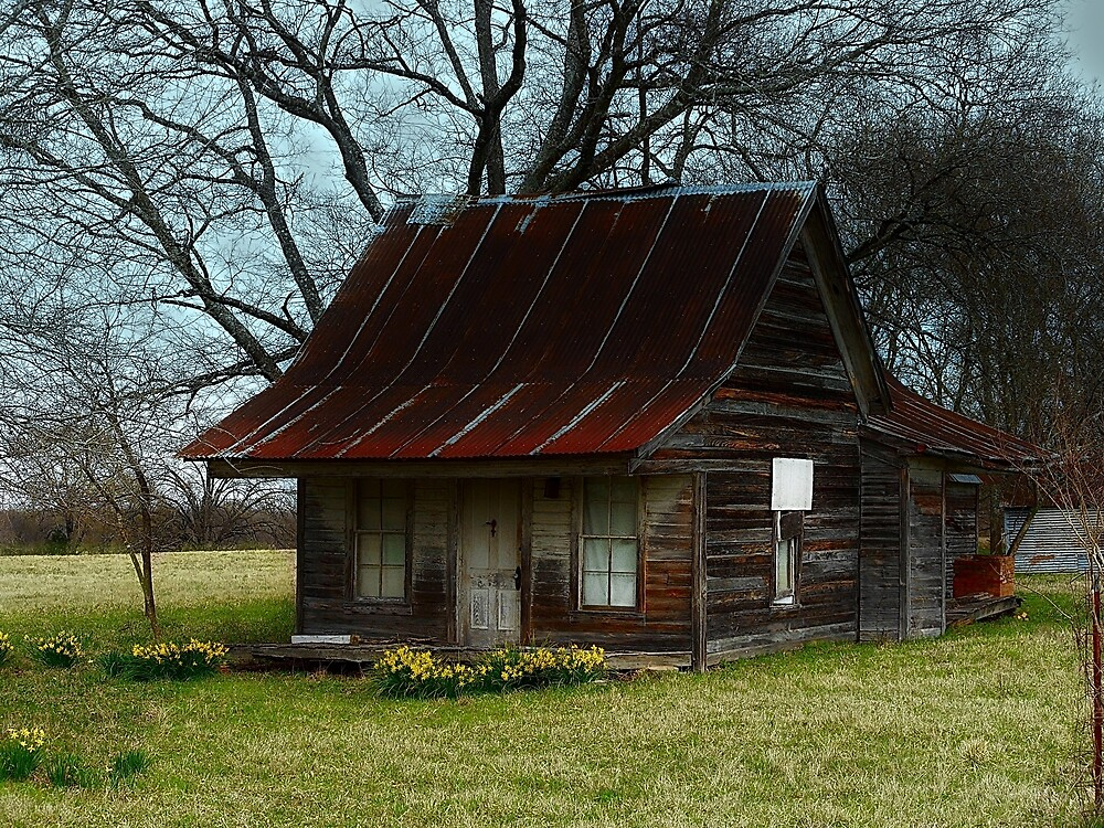 Dollhouse Cabin by Dawn di Donato