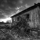 Derelict old farmers shed - West Coast by Francis Carmine