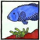 Blue grouper by RobAllsop