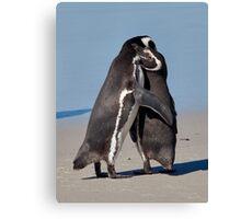 Pingo Hugs Canvas Print
