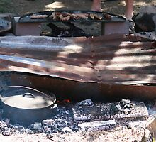 Bush BBQ and Oven by aussiebushstick