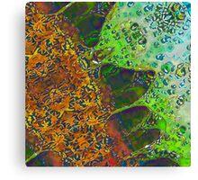 Indian Summer 2 Canvas Print