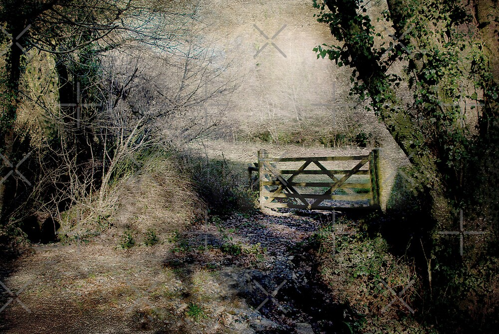 Over the Gate by Catherine Hamilton-Veal  ©