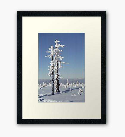 A diamond-dust day at the Smrk mountain 1 (Jizera mountains, Czech Republic) Framed Print