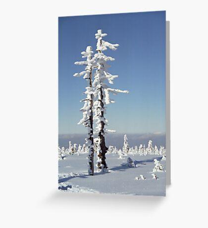 A diamond-dust day at the Smrk mountain 1 (Jizera mountains, Czech Republic) Greeting Card