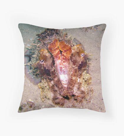 Swansea Giant Cuttle Throw Pillow