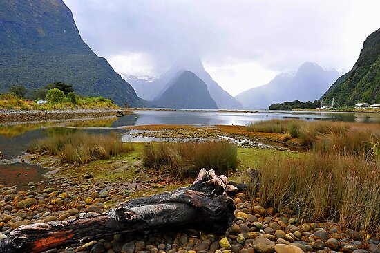 Milford Sound. South Island, New Zealand. by Ralph de Zilva