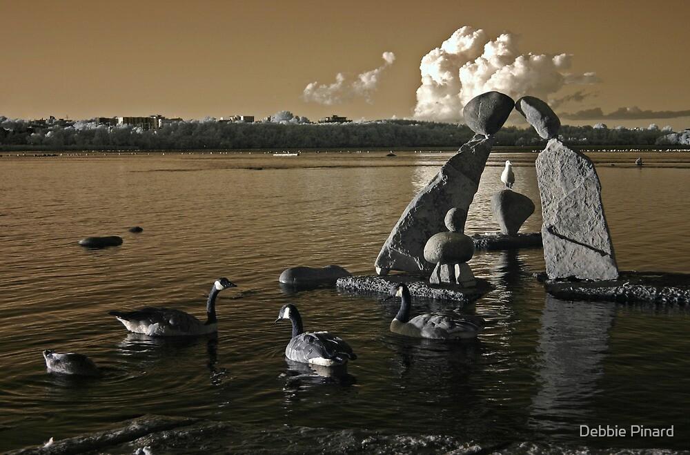 Canadian Geese at Remicks Rapids, Ottawa by Debbie Pinard