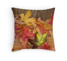 Lone Cool Colour Throw Pillow