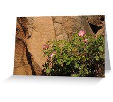 Rocks and Roses Greeting Card