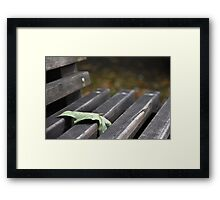 All Alone on a Park Bench Framed Print