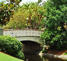 Water Under the Bridge by Nicole Jeffery