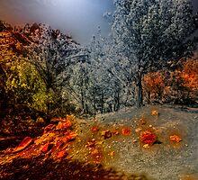 ALIEN LANDSCAPE by Stephen Campbell