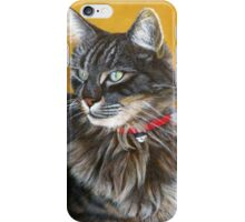 Watching You.....  Acrylic painting iPhone Case/Skin