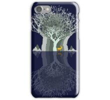 Frozen Reflection - Evening iPhone Case/Skin