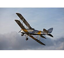 Tiger Moth 5 Photographic Print