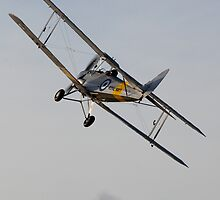 Tiger Moth 6 by Tony Roddam