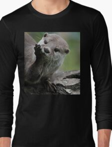 Otter Dreams Long Sleeve T-Shirt