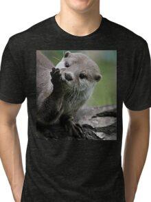 Otter Dreams Tri-blend T-Shirt