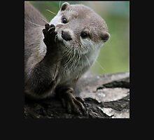 Otter Dreams Unisex T-Shirt