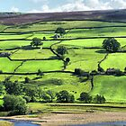 Patchwork Fields Of The Dales by Sandra Cockayne