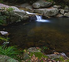 Cedar Creek by John Quixley