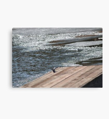 cracklin Canvas Print