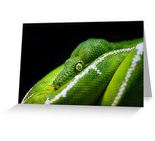 Tree Python Greeting Card