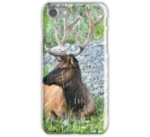Just Chillin iPhone Case/Skin