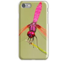 The Pink Dragonfly iPhone Case/Skin