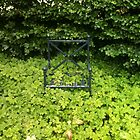 The garden grows round the chair by timbuckley
