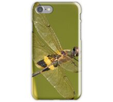 The Dragonfly iPhone Case/Skin