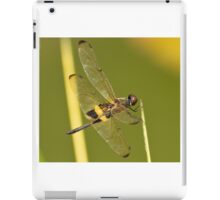 The Dragonfly iPad Case/Skin