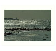 Harsh Light,Barwon Heads  Art Print
