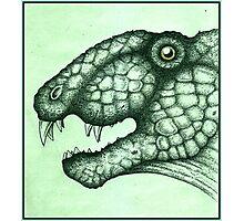 ~Dimetrodon Grandis~ Photographic Print