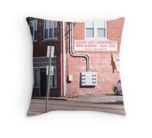 Lap of Luxury Throw Pillow
