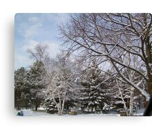 Snow.... Pure no additives.... Canvas Print