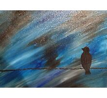 bird on a wire blue Photographic Print