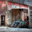 Rye Valley Stock Farm by Lori Deiter