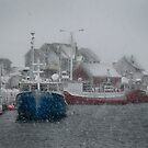 Peggy's Cove in a Snow Storm by Roxane Bay