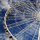 high in the sky . by nerh
