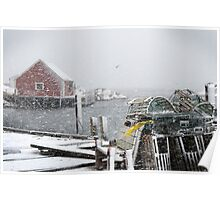 Peggy's cove January 2011 Poster