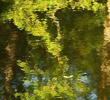 Green reflection by pulen