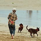 Go Fetch ... by Joe Mortelliti